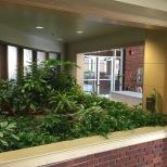 Interior Plant Life